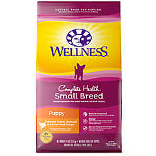 small breed puppy food reviews